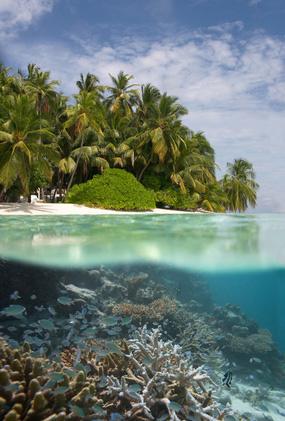 malediven tips und informationen f r reisen zum indischen ozean. Black Bedroom Furniture Sets. Home Design Ideas